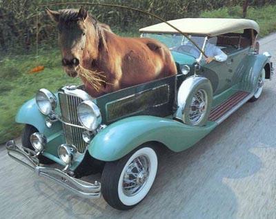 cheval_voiture__pgr_635.jpg